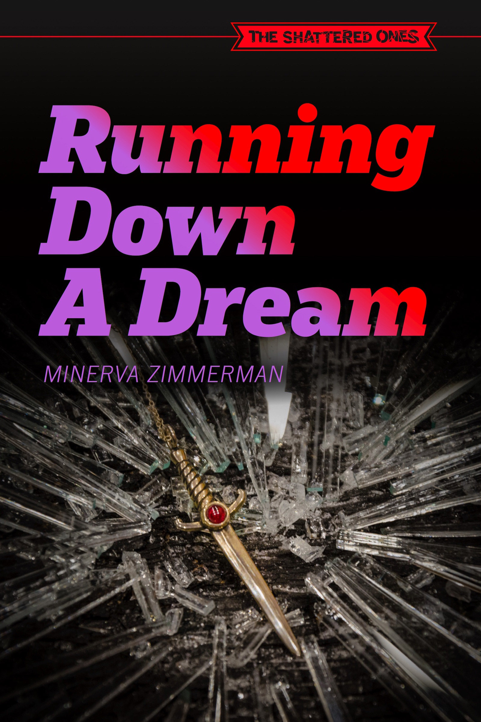 Cover image for Running Down a Dream